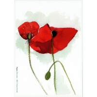 poppiespcards9