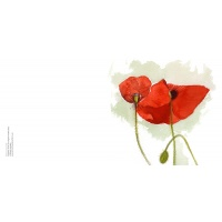 sah_poppies